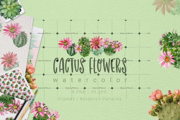 Pink Cactus Flowers Png Clipart Digital