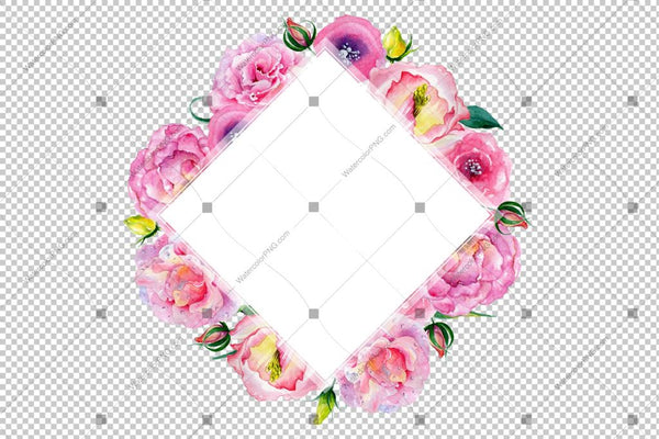 Pink Rose Png Watercolor Frame Flowers Design