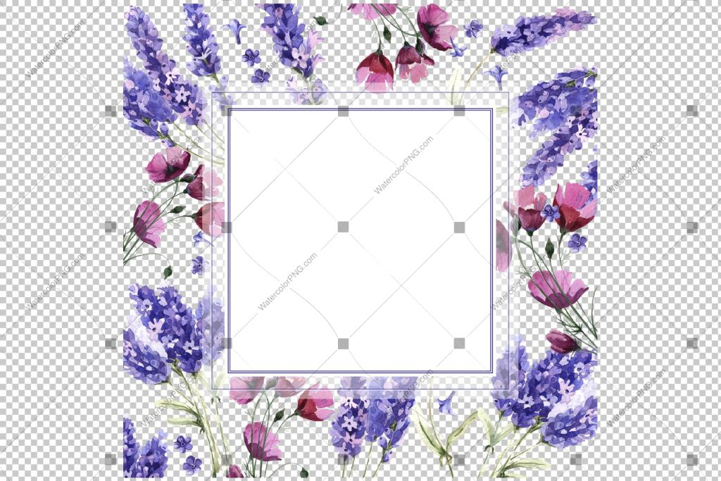 Purple Lavender Frame Flowers Watercolor Png Watercolorpng