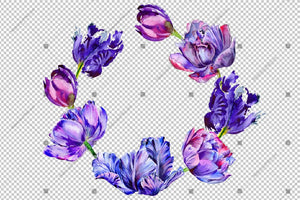 Purple Tulip Frame Flowers Watercolor Png Design