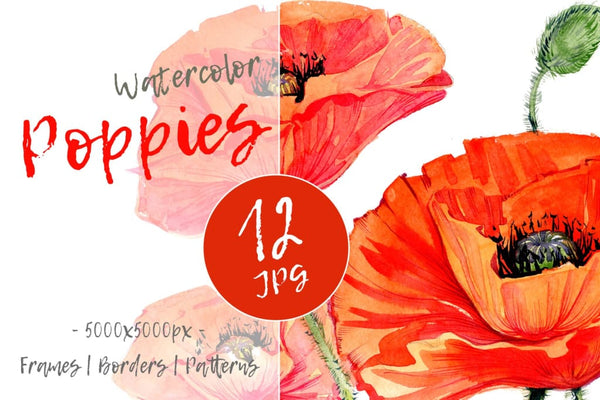 Red poppies PNG watercolor set