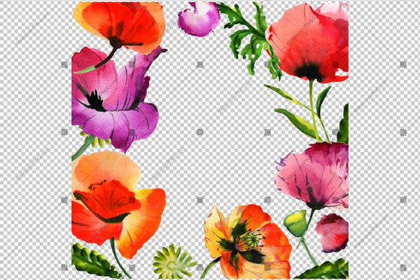 Red Poppy Frame Akvarellblommor Png Design