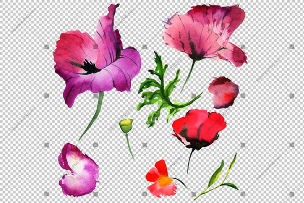 Set Poppy Red Watercolour Flowers Png Flower