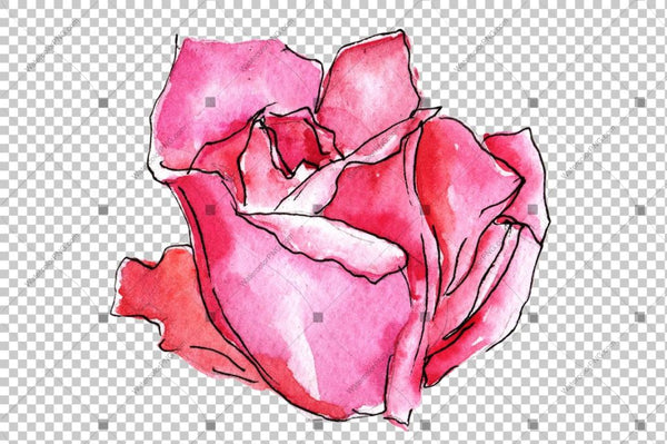 Red Roses Watercolor Flowers Png Flower