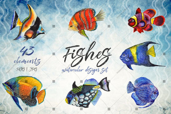 Sea Fishes Png Akvarel Set Digital
