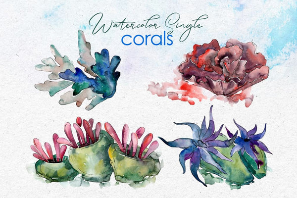 Seafood corals watercolor png Digital