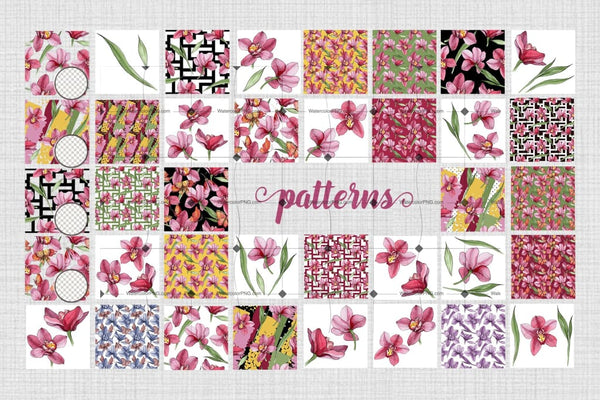 Sophisticated 97 Pink Orchids To Feel East Digital