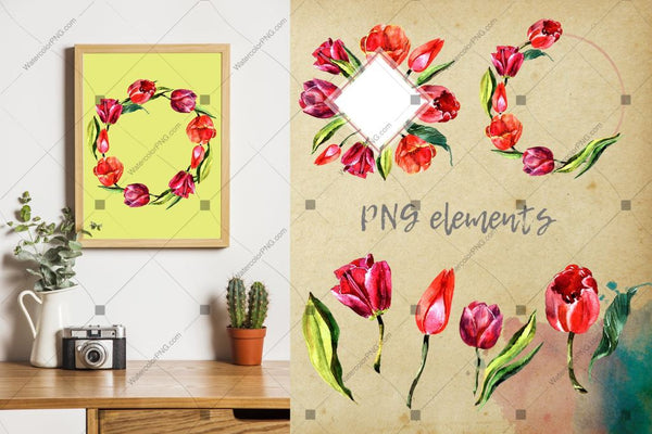 Stunning Red Tulips Png Watercolor Set Digital