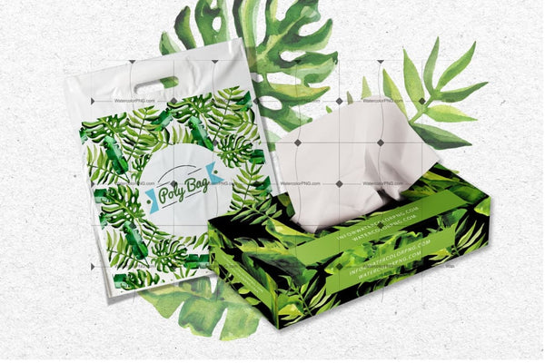 Succulent Tropical Leaves Png Watercolor Set Digital