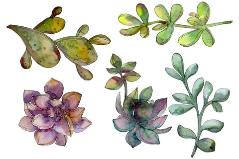 Freebie watercolor download