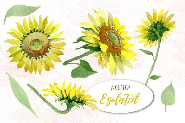 Sunflower Yellow Watercolor png Digital