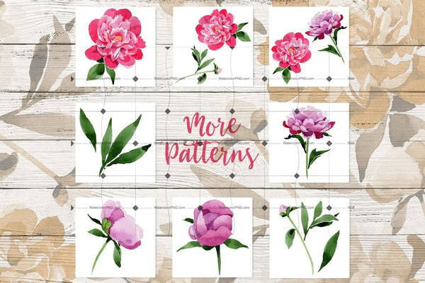 Sweet 85 Pink Peonies Png Files Digital