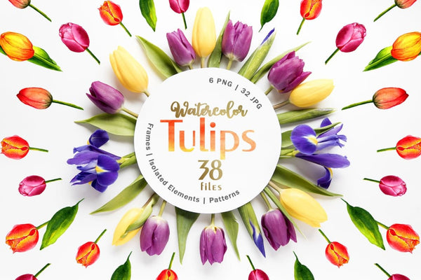 The boom of colorful tulips! Digital