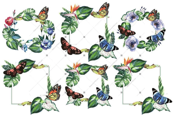 Tropical Clipart Png Watercolor Set Digital