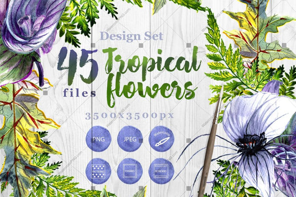 Tropical Flowers Png Watercolor Set Digital