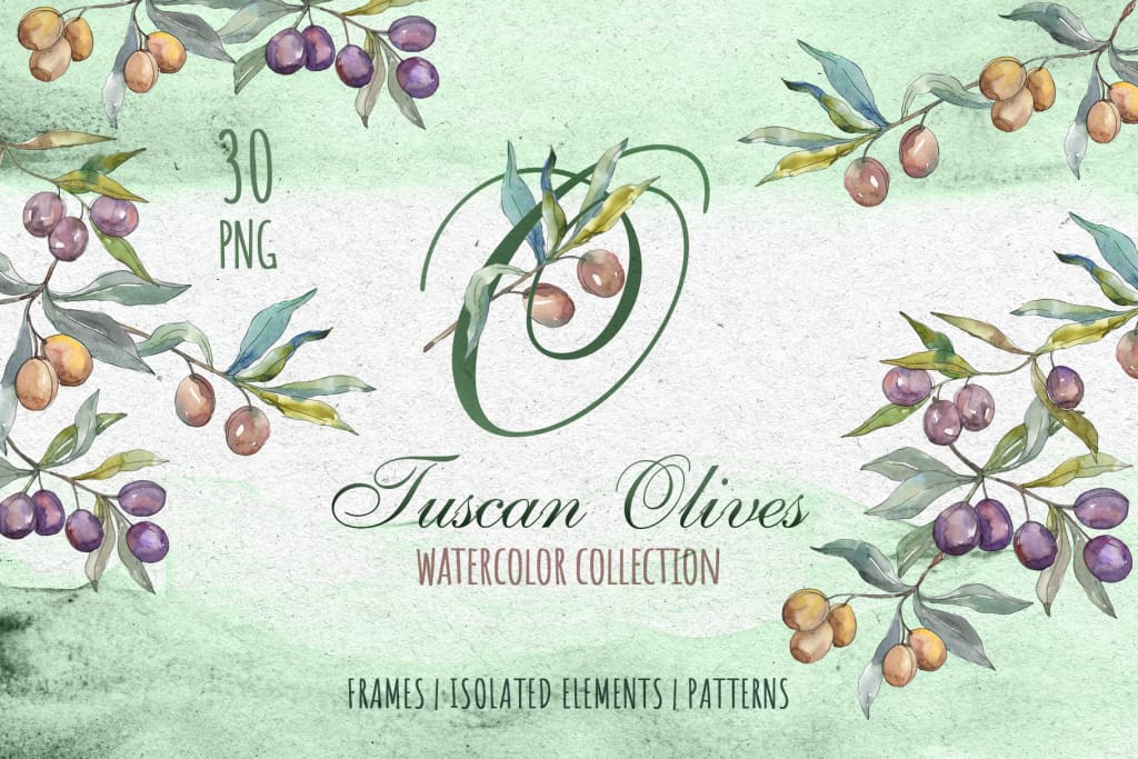 Tuscan Olives green Watercolor png Digital