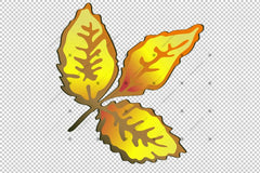 Vector Autumn Сары Роза Хип Plant Png Set Flower