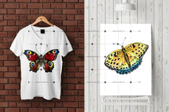 Watercolor Butterflies Eps And Png Digital