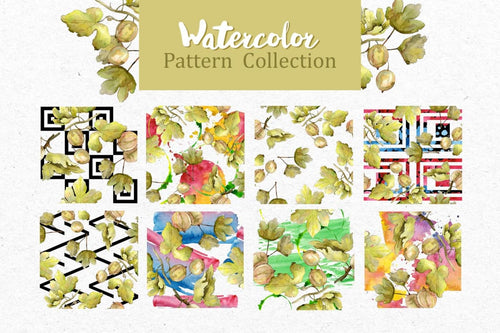 Watercolor Gooseberry PNG collection Digital
