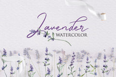 Watercolor Lavender PNG collection Digital
