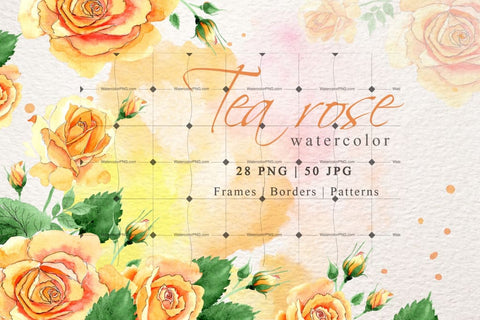 Watercolor Yellow Rose Png Set Digital
