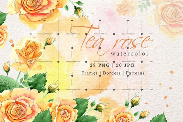 Weekly watercolor bundle 06/12/19