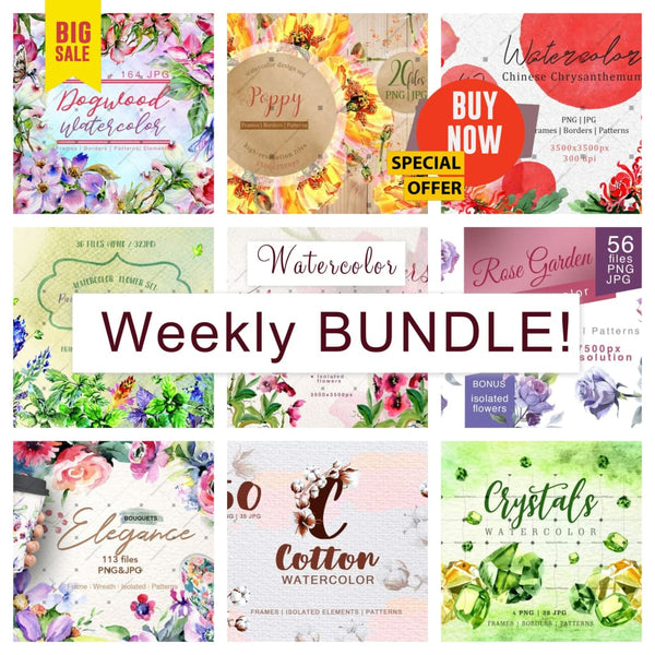 Weekly watercolor bundle 25/12/19 Bundle