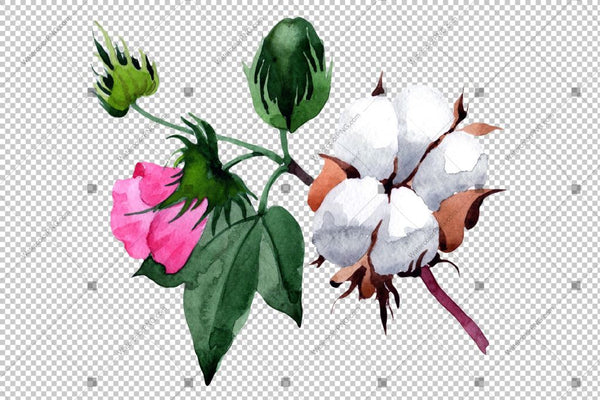 White Cotton With Pink Flowers Watercolor Png Flower