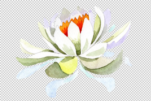 White lotus flower watercolor png Flower