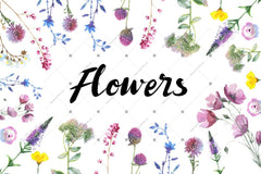 Wild Flowers Sulu boya Png Clipart Digital