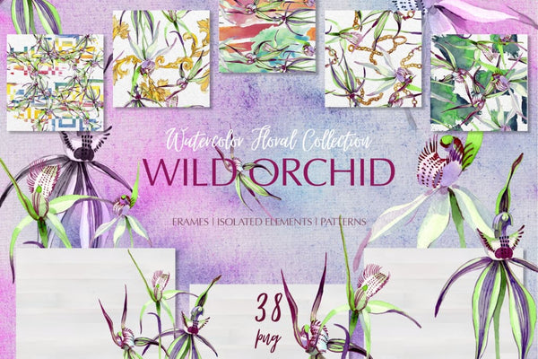 Wild orchid Watercolor png Digital