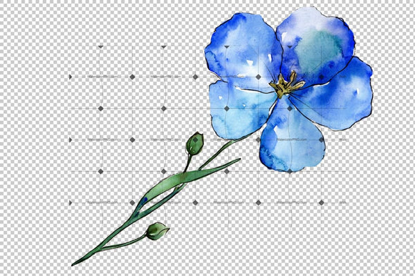 Wildflower Blue Flax Png Watercolor Set Flower