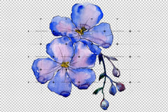 Wildflower Blue Laneni png Akvarel Set cvet