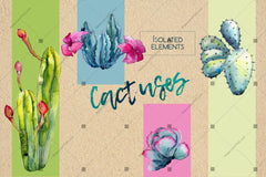 Wildflower Cactus Png Watercolor Set Digital