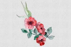Wildflowers Watercolor png Flower