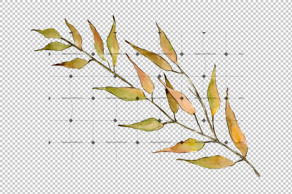 Willow Branches Png Watercolor Set Digital