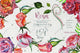 Wonderful roses PNG watercolor flower set