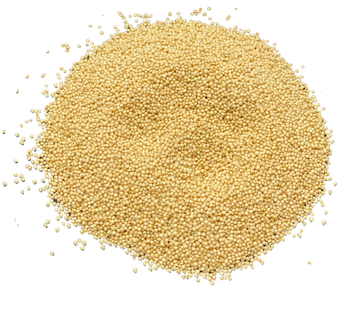 AMARANTH SEEDS ORGANIC