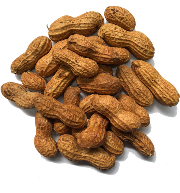 AUSTRALIAN ROASTED PEANUTS IN SHELL