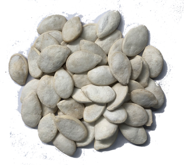 SALTED JUMBO PUMPKIN SEEDS IN SHELL