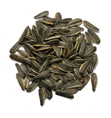 UNSALTED SUNFLOWER SEEDS IN SHELL