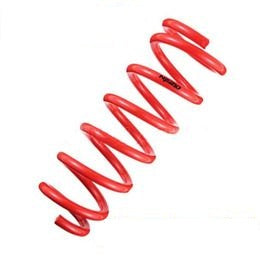 TANABE NF210 SPRINGS: CL TYPE-S 01-03/TL 99-03