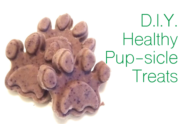 EASY Healthy Pup-sicle Treats for your dog!