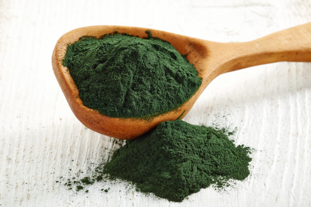 The Benefits of Spirulina for Dogs