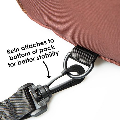 Diono Safety Reins & Backpack