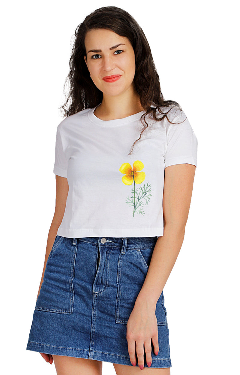 Abyssinia Crop TOP