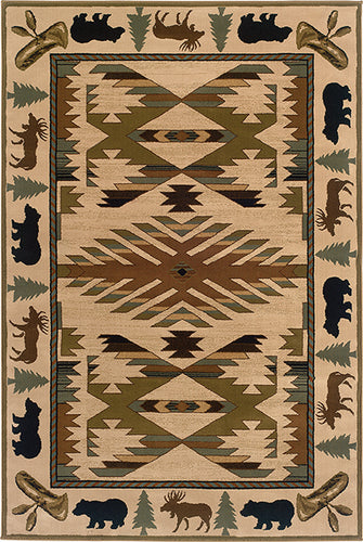 Pet Friendly Hudson 1072a Rug oriental weavers