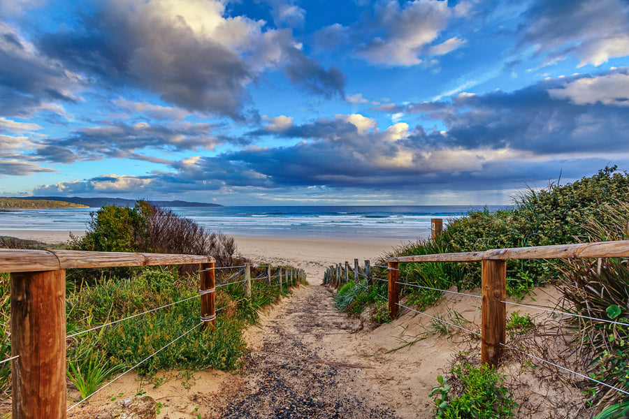 The 5 Best Campsites Near Surf Beaches in NSW