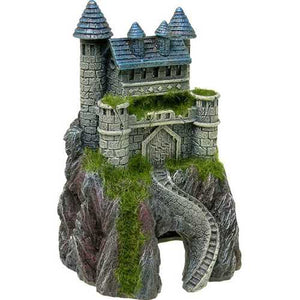 Mountain Top Castle With Moss