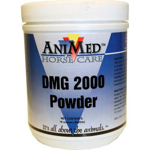 Dmg 2000 Powder